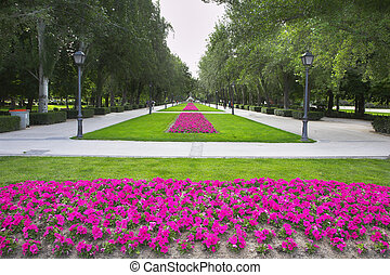 Madrid park Buen-Retiro - Picturesque Madrid park...