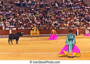 MADRID, SPAIN - SEPTEMBER 18: Matador and bull in bullfight on September 18, 2011 in Madrid, Spain