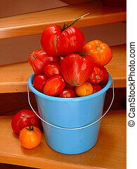 maduro, grande, tomates, .