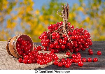 maduro, viburnum, tazón de madera, fondo velado, tabla, bayas, rojo, jardín