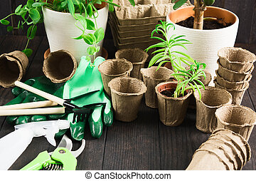 Mady different pots and tools for gardening on wooden table with copy space