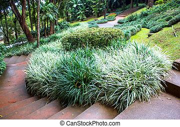 Mae Fah Luang Garden, locate on Doi Tung, Thailand