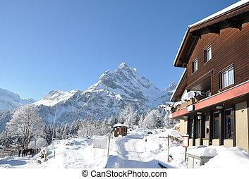 maestoso, svizzera, vista., alpino