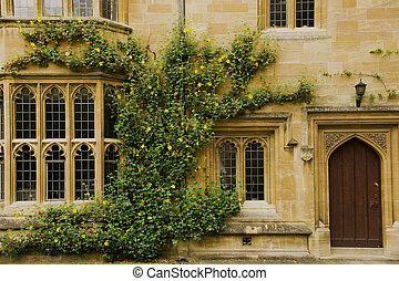 Magdalen College is one of the most famous collages in Oxford. It was founded in 1458. The Cloister or Great Quad was built in 1474-80