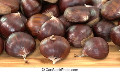 Maggot on sweet spoil chestnut, bad food on wood table