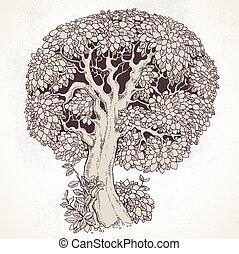 magi, gammalt träd
