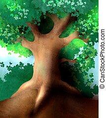 magia, árbol