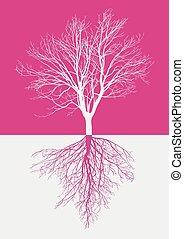 magia, árvore nua, raizes