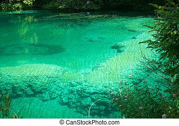magia, colori, in, plitvice, lago, croazia