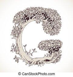 magia, g, vindima, -, árvores, mão, floresta, desenhado, ...