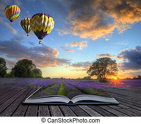 magia, lavanda, aria, caldo, libro, palloni, pagine, paesaggio