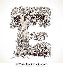 magia, vindima, -, árvores, mão, floresta, desenhado, fonte...
