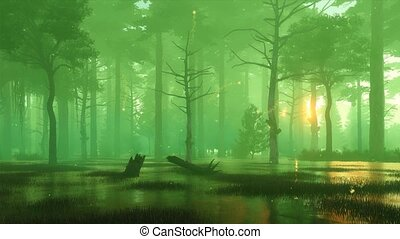Magic firefly lights on foggy mystic forest swamp -...
