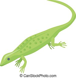 Magic green lizard icon, isometric style