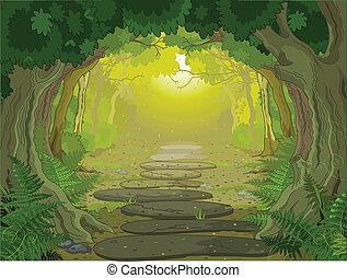 Magic landscape entrance - Magic forest landscape with trees...