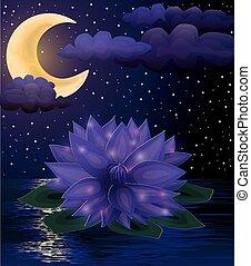 Magic lotus flower background