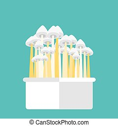 Magic mushrooms grow kit. Vector illustration of psilocybin...