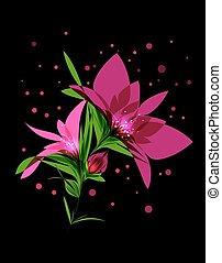 Magic pink flower blooming on black background
