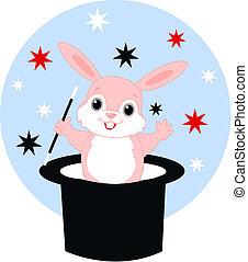 magic rabbit surprise