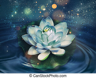 magic shining lily flower on a dark water background