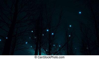"""""""magic, sylwetka, forest"""", noc"""