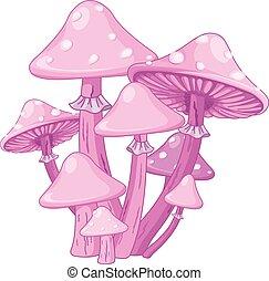 Magic Toadstools - Illustration of magic toadstools