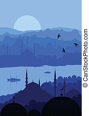 Magic Turkish city Istanbul landscape vector