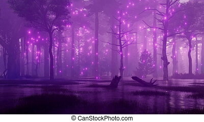 Magical lights on creepy night forest swamp 4K - Mysterious...