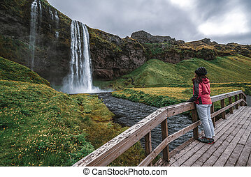 Magical Seljalandsfoss Waterfall in Iceland.