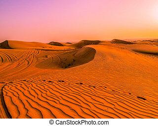 Magical sunset in the desert