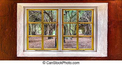 Magical trees seen through a window