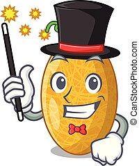 Magician tasty honeydew melon isolated on mascot