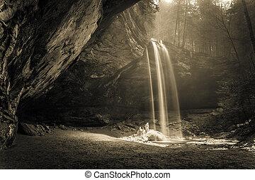 magique, forêt, chute eau