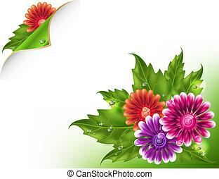 maglia, floreale