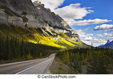 magnífico, americano, road., a, paisagem
