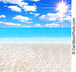 magnífico, playa