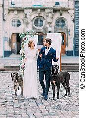magnífico, rubio, novia, y, guapo, novio, ambulante, con, su, perros, en, calles, de, antiguo, ciudad europea, lviv