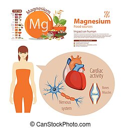 Magnesium - Infographics. Magnesium. Food sources and...