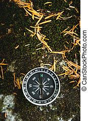 magnetisch, kompaß, mit, a, schwarz, wählscheibe, auf, a, wild, stein, bedeckt, mit, grün, moss., der, begriff, von, befund, der, weg, und, schifffahrt