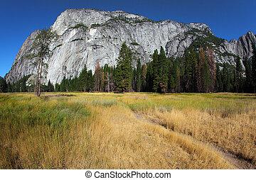 Magnificent glade  in valley Yosemite