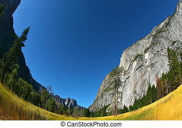 Magnificent glade  in valley Yosemite park
