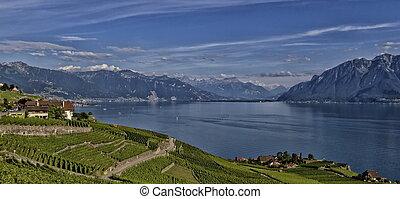 Magnificent landscape of Lavaux in Switzerland