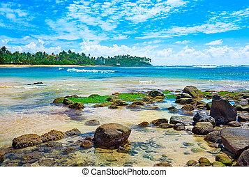 magnificent landscape of the sea