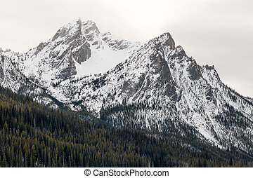 Magnificent mount peak in Idaho with snow and a forest