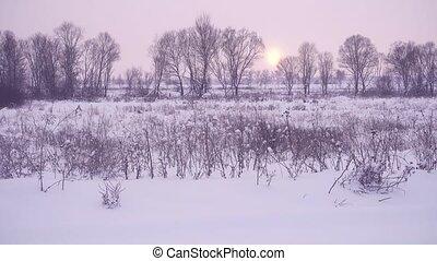 Magnificent winter landscape at sunset.