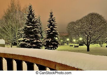 Magnificent winter landscape in the city park at night