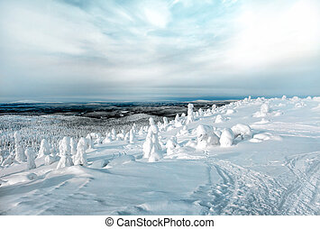 Magnificent winter landscape in the north of Karelia in Russia. View from the mountain Kivakka on the forest expanses