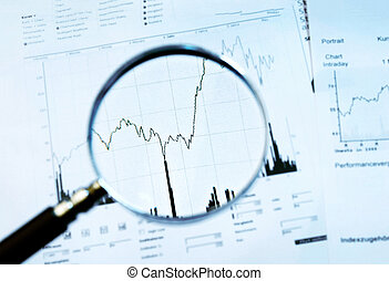 Magnifier and share price