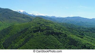 magnifique, paysages, montagne, panoramique, majestueux, hills., neigeux, gamme, vue, forêt verte