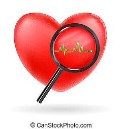 magnify glass scanning red heart beat vector